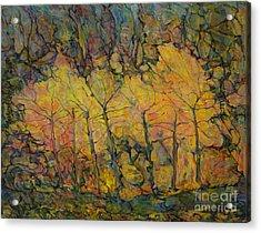 Maples Acrylic Print by Anna Yurasovsky