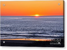 Marbled Godwits Reflecting A Sunset Acrylic Print