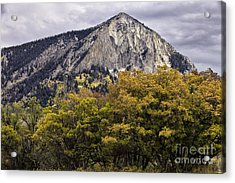 Marcellina Mountain Acrylic Print
