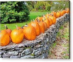 March Of The Pumpkins Acrylic Print by Janice Drew