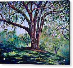 Marcus Oak Acrylic Print