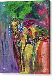 Mardigras Horse Acrylic Print