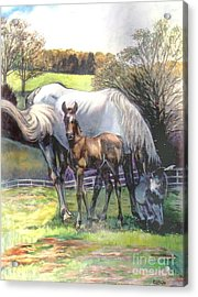 Mare And Foal Acrylic Print by Stan Esson
