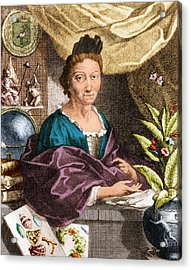 Maria Merian  Acrylic Print by Science Source