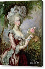 Marie Antoinette After Vigee Lebrun Acrylic Print by Louise Campbell Clay