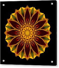 Acrylic Print featuring the photograph Marigold Flower Mandala by David J Bookbinder