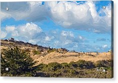 Marina State Beach Dunes Iv Acrylic Print by Jim Pavelle