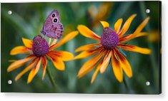 Mariposa Dos Flores Acrylic Print