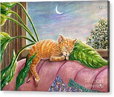 Marmalade Acrylic Print by Dee Davis