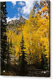 Maroon Bells Color Acrylic Print by Steve Anderson