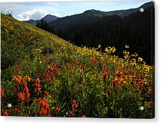 Maroon Bells Wilderness Acrylic Print