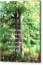 Marriage Tree - Verse Acrylic Print by Anita Faye