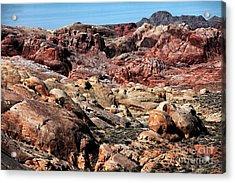 Mars On Earth Acrylic Print by John Rizzuto