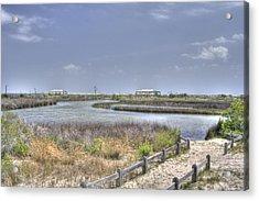 Marsh Acrylic Print