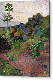 Martinique Landscape, 1887 Oil On Canvas Acrylic Print