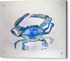Maryland Blue Crab  Acrylic Print by Nancy Patterson