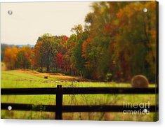 Maryland Countryside Acrylic Print