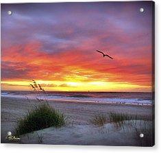 Acrylic Print featuring the photograph Masonboro Inlet Sunrise by Phil Mancuso