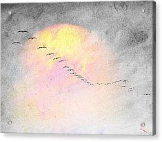 Mass Migration Acrylic Print by SM Shahrokni