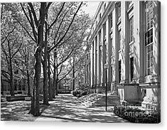 Massachusetts Institute Of Technology Eastman Labs Acrylic Print