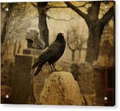 Master Of His Universe Acrylic Print by Gothicrow Images