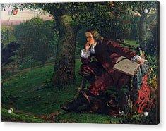 Isaac Newton Acrylic Print by Robert Hannah