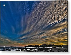 Masterpiece By Nature Acrylic Print