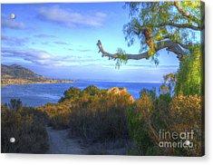 Masterpiece Coastline Acrylic Print