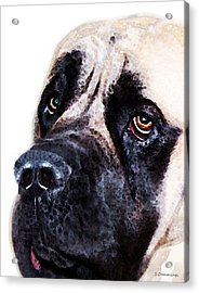 Mastiff Dog Art - Sad Eyes Acrylic Print by Sharon Cummings