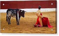 Matador Kneeling  Acrylic Print by Dave Dos Santos