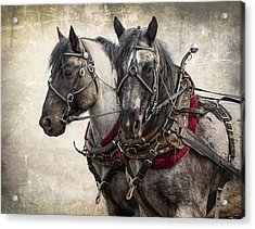 Matched Pair Acrylic Print
