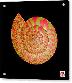 Math Conch Acrylic Print by GuoJun Pan