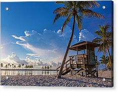 Matheson Hammock Park Atoll Acrylic Print