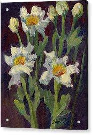 Matilija Poppies Acrylic Print