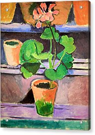 Matisse's Pot Of Geraniums Acrylic Print