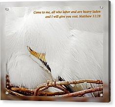 Matthew 11 28 Acrylic Print by Dawn Currie
