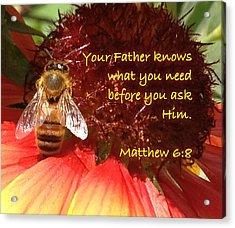 Matthew 6 8 Acrylic Print