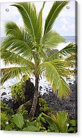Maui Coast Acrylic Print by Jenna Szerlag