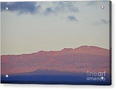 Mauna Kea Volcano At Sunrise From Hilo Acrylic Print by Sami Sarkis