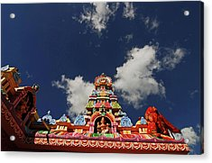 Mauritius, Bambou, Low Angle View Acrylic Print