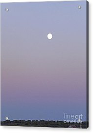 Mauve Moonlight Acrylic Print