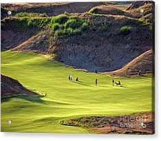 May I Play Through? - Chambers Bay Golf Course Acrylic Print by Chris Anderson