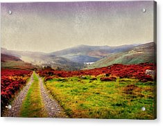May It Be Your Journey On. Wicklow Mountains. Ireland Acrylic Print