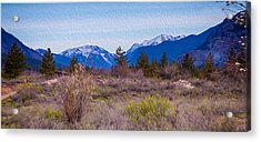 Acrylic Print featuring the photograph Mazama From Wolf Creek by Omaste Witkowski