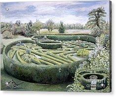 Maze Acrylic Print by Ariel Luke