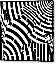 Maze Of Cat On Fence Op Art Acrylic Print by Maze Op Art Artist