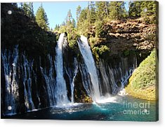 Acrylic Print featuring the photograph Mcarthur-burney Falls 1 by Debra Thompson