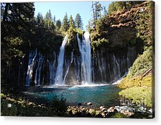 Acrylic Print featuring the photograph Mcarthur-burney Falls 2 by Debra Thompson