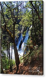 Acrylic Print featuring the photograph Mcarthur-burney Falls Side View by Debra Thompson