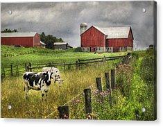 Mcclure Farm Acrylic Print by Lori Deiter